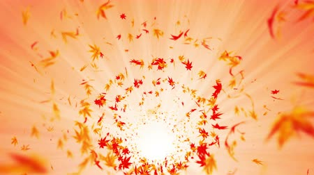 вихревой : Vortex from colorful maple and leaves. Spiral shiny particle of autumn leaves. Dancing leaf. Colorful nature tunnel loop animation. Стоковые видеозаписи