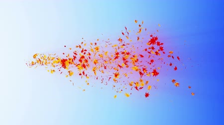 red maple : Vortex from colorful maple and leaves. Spiral shiny particle of autumn leaves. Dancing leaf. Colorful nature tunnel loop animation. Stock Footage