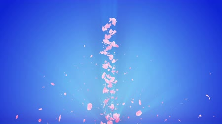 csigavonal : Spiral shiny particle of cherry blossoms. Sakura pattern. Japanese cherry dancing. Vortex from pink petals. Abstract loop animation. Stock mozgókép