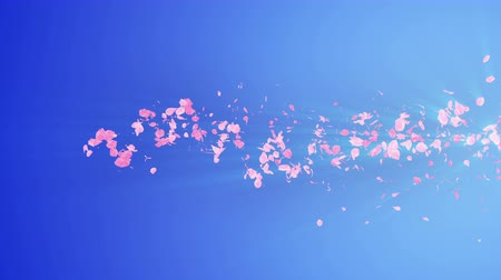 speed tunnel : Spiral shiny particle of cherry blossoms. Sakura pattern. Japanese cherry dancing. Vortex from pink petals. Abstract loop animation. Stock Footage