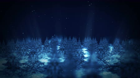 felhős : Winter Forest illustration, Loop landscape animation, Night scene, Abstract nature background