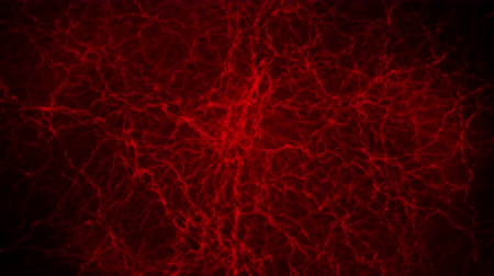capillari : 3D loop animation of human blood vessel. Red Capillary. Eye Blood on Black Background. Anatomical background. Medical concept.