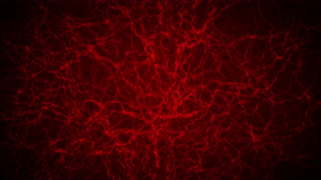 bulva oční : 3D loop animation of human blood vessel. Red Capillary. Eye Blood on Black Background. Anatomical background. Medical concept.