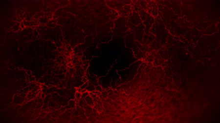 capillary : 3D loop animation of human blood vessel. Red Capillary. Eye Blood on Black Background. Anatomical background. Medical concept.