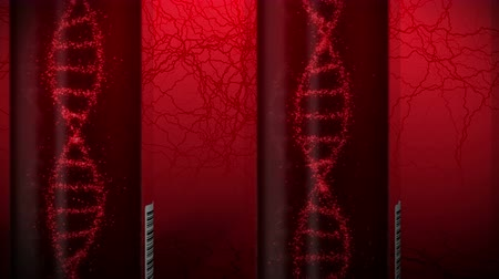 gen : Molecule of DNA System with Red Blood in Test Tube. Blood test equipment. Loop animation. Medical concept. 3d rendering vein and artery.