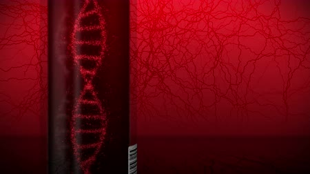 reagenzglas : Molecule of DNA System with Red Blood in Test Tube. Blood test equipment. Loop animation. Medical concept. 3d rendering vein and artery.