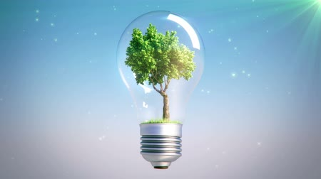 energia : 360 Rotation Of green Tree Inside A Bulb Lamp with falling leaves on grass, seamless loop Vídeos