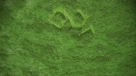 reutilização : Recycling icon created by growing grass moving in subtle wind