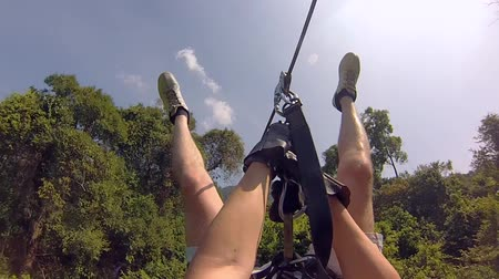 экстремальный : Flying bungee jumping in the jungle of Thailand. Cable car on the trees with a downhill Стоковые видеозаписи