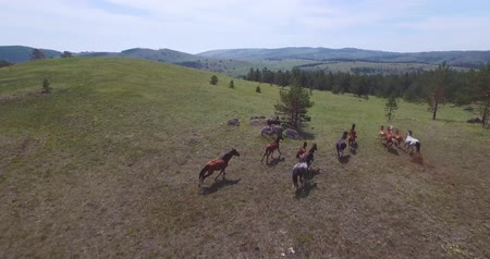 stylization : Drone video of a running horses Stock Footage