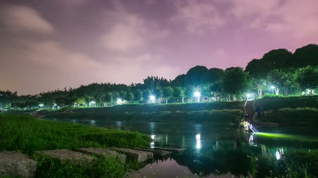 Park in China, timelapse shot at night Stock Footage