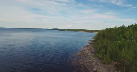virgin forest : aerial motion along empty lake bank covered with forest Stock Footage