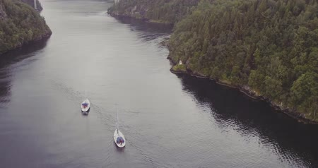 yachts sail to bridge over fjord forestry hilly banks