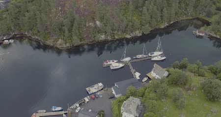 small vessels : aerial forestry fjord coast reflected in water with yachts Stock Footage