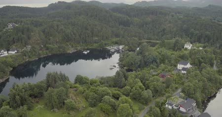 splendid : aerial forestry fjord shore with houses water reflects trees