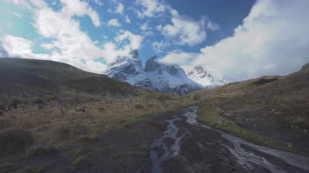 glacier national park : 4k dolly shot of a hiking trail in Torres del Paine National Park in Chile Stock Footage