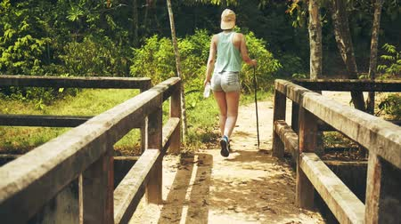 gyertyafa : Girl is walking along an abandoned bridge in the jungle Stock mozgókép