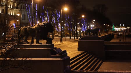 святой : St. Petersburg, Sculptures of Lions at night   Стоковые видеозаписи
