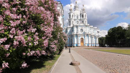 saintpetersburg : Smolny Cathedral in the early summer, St. Petersburg, Russia Stock Footage