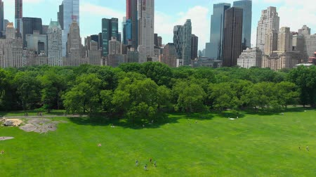 américa central : Top view of central park in new york