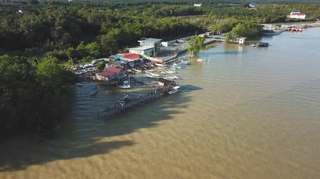 borowina : drone view of boats at fish jetty, malaysia