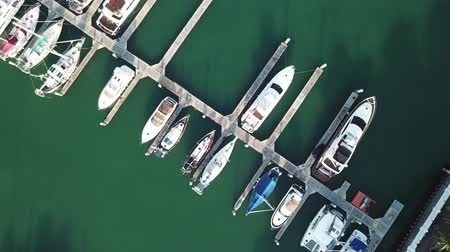 Aerial view of a lot of white boats and yachts moored in marina on a turquoise water 動画素材