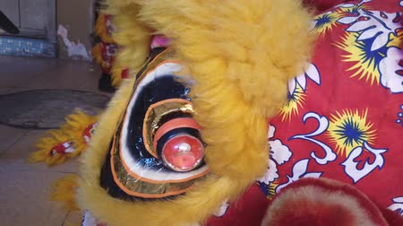 лунный : Lion dance in the Chinese New Year.