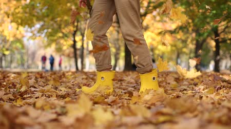 fallen leaves : many autumn golden leaves feet girl boots Stock Footage