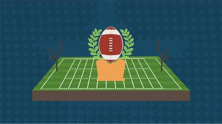 laur : Football field and ball, Video animation, HD 1080