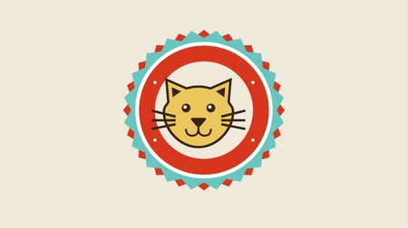 infografik : pet icon design, Video Animation