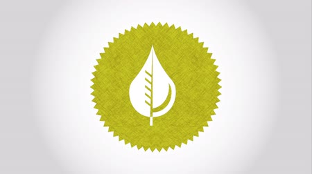 устойчивость : Ecology icon design, Video Animation