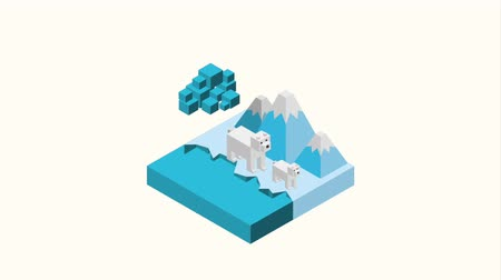 instincts : mother and a polar bear cub walking on ice with mountains isometric landscape animation hd