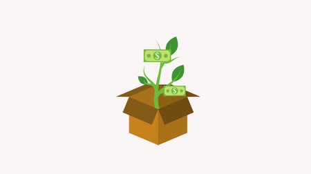 горшках : cardboard box and potted plant dollar banknote growth animation hd
