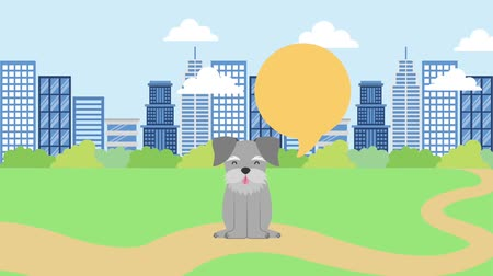 chovat : city park sitting road dog speech bubble animation hd
