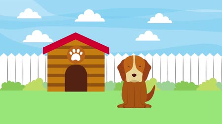 front or back yard : happy dog in the garden with wooden house animation hd Stock Footage