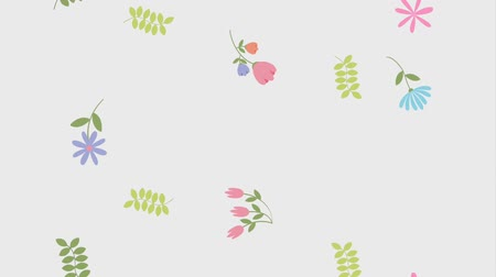 seçkinler : floral motion flowers sprout leaves natural animation hd