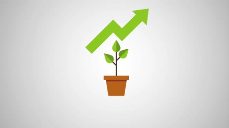 pie chart : plant in pot with graph arrow for growth rising business icons animation design