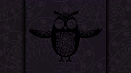 owl bird with boho style,hd video animation Wideo