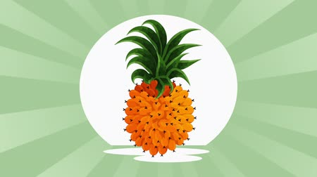 impressão digital : tropical and exotic pineapple fruit , hd video animation Stock Footage