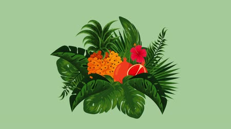 лимонный : fresh tropical and exotic oranges and pineapple fruits , hd video animation