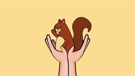 impressão digital : hello autumn season with hands lifting chipmunk ,4k video animation