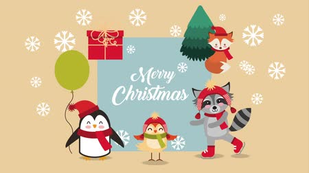 raccoon : happy merry christmas card with cute animals ,hd video animation