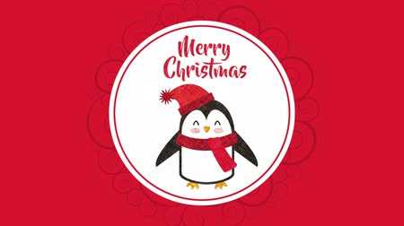 pinguim : happy merry christmas card with little penguin ,hd video animation Stock Footage