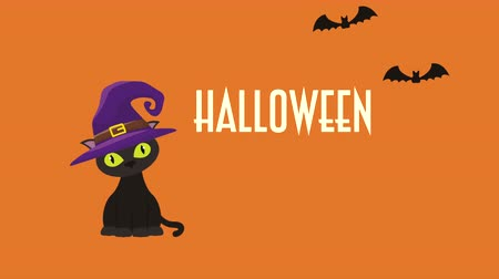 mascot : halloween dark scene with cat and witch hat ,4k video animation Stock Footage
