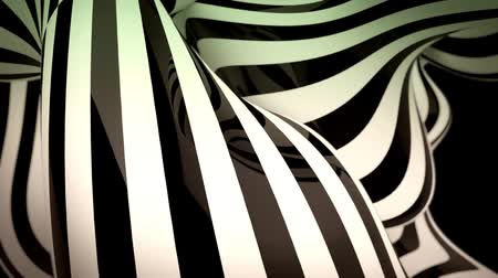 bílý : abstract black and white motion background with moving zebra lines loop