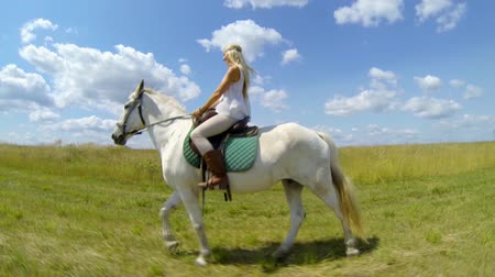 horse riding : Young female sitting on the white horse outdoor under sky with clouds