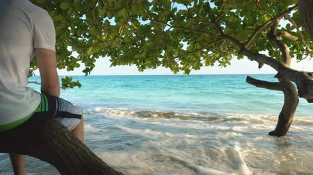 elvonult : Man Sitting on Shaded Branch Below Exotic Tree At Sandy Tropical Beach While Waves Caress Feet Stock mozgókép