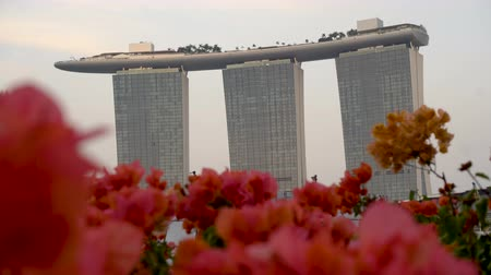 Singapore Telephoto View of Marina Bay Sands Hotel With Roses in Foreground - View From Clifford Pier Area Dostupné videozáznamy