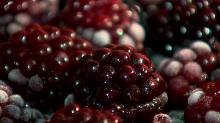 Blackberry charming picture, vitamins Stok Video