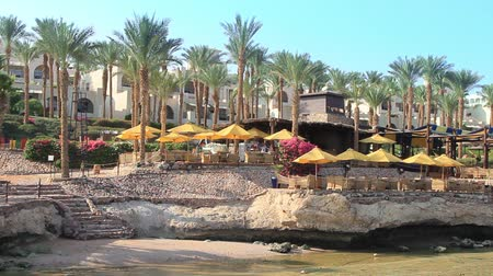 nyaraló : panoramic view of the rocky beach of a hotel in Egypt on the Red Sea with palm trees